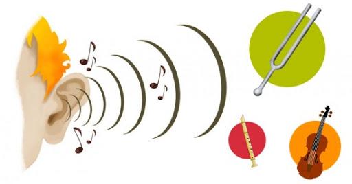 esquema onda sonora audición - Óptica Jesús